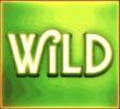 Alchymedes wild