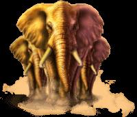 Stampede elephants