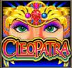 Cleopatra wild