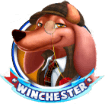 Wonder Hounds winchester