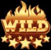 Nitro Circus wild