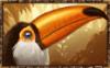 Phoenix Reborn bird