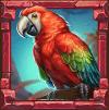 Rainforest Magic parrot