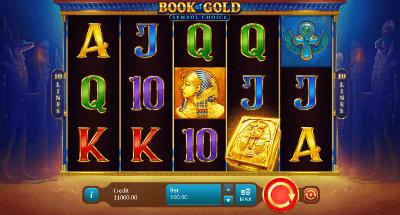 Book of Gold: Symbol Choice slot