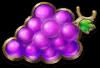 Chronos Joker grape