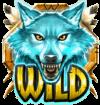 Coywolf Cash wild